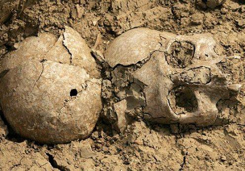 un-craniu-de-40-000-de-ani-perforat-de-un-glonte