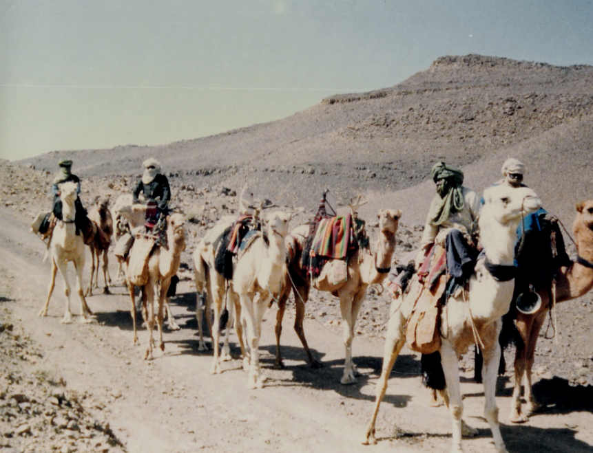 Caravană în Sahara algeriană. Sursă Hoggar, 1990. Autor Yelles C.M.A., Wikipedia.