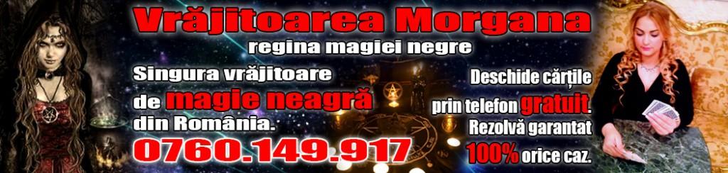 Banner-1050x250-Morgana-ok-1024x244