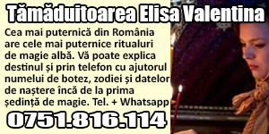 Banner 300x150 Tamaduitoarea Elisa Valentina
